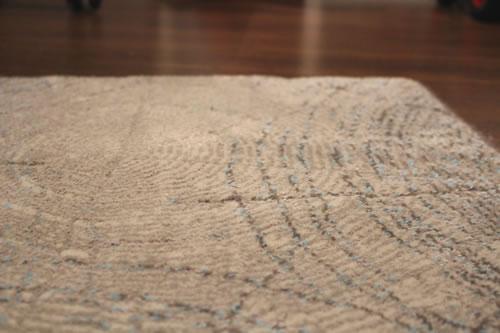 teppichboden reinigen