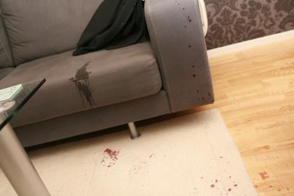 Flecken Entfernen Sofa fleckentfernung flecken auf polstermöbeln entfernen